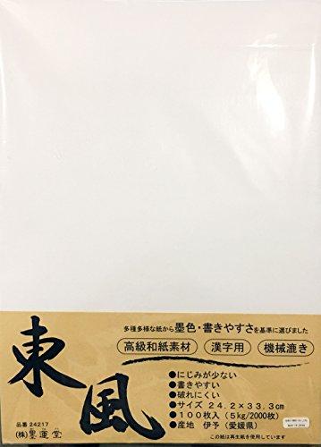 East Wind Shodo Japanisches Briefpapier für Kalligraphie, 100 Stück, 24,2 x 33,3 cm