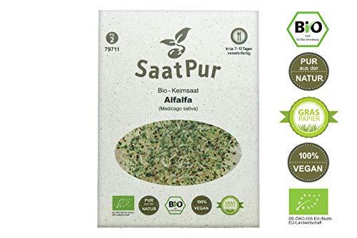 SaatPur Bio Keimsprossen - Keimsaat für Alfalfa Sprossen, Microgreen - 50g