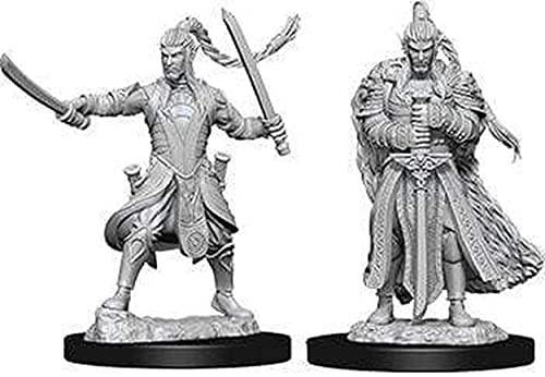 WizKids D&D Nolzur's Marvelous Miniatures - Male Elf Paladin