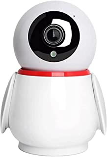Penguin Appearance Security Camera, HD Indoor/Outdoor Video Camera for Security,Human/Vehicle/Pet Motion Dection, Baby Mon...