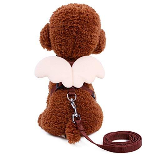 GOUSHENG kraag Comfortabel Roze Huisdier Hond Leash Verstelbare Harnas Puppy Leads En Kraag Set Voor Kleine Doggie Kitten Vest Band Met Engel Vleugels, Marron