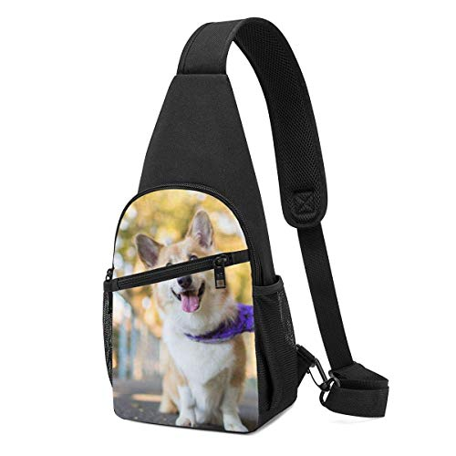 Mochila para perro Corgi, mochila de viaje, senderismo, bolsa de hombro para hombre casual