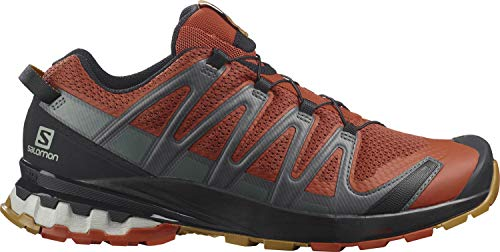 Salomon Herren Xa Pro 3d V8 Trail Running Shoe, Rot Rooibos Tea Black Cumin, 41 1/3 EU