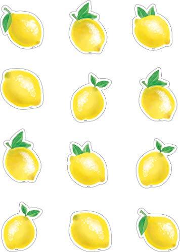 Teacher Created Resources Lemon Zest Mini Accents (TCR8481)