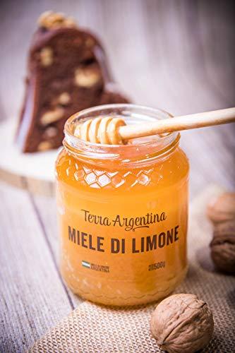 Miel de Limon pura de abeja, 100% natural y de calidad premium - Terra Argentina 500gr