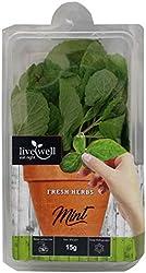 Live Well Mint Leaf, 15 g