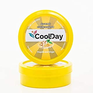 Cool Day - Immune Support Lozenges with Ginger and Propolis - Cooling Sensation - Natural Anti-Inflammatory Relief - Sugar...