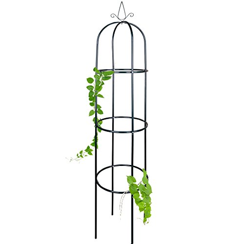 Anaterra Rosenturm, Rankhilfe für Pflanzen, Rankgerüst, Rankturm aus Metall, 40 x 40 x 200 cm, 1/2er Set (1 Stück)