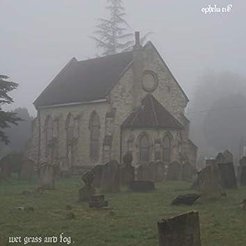 Wet Grass and Fog