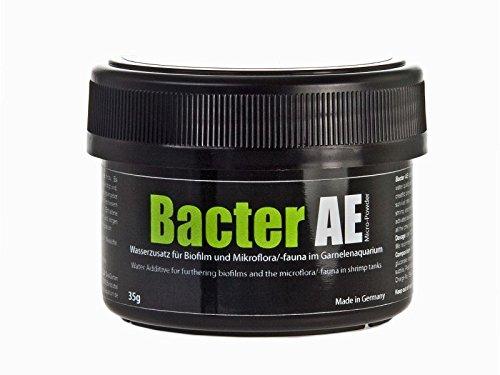 GlasGarten Bacter AE Micro Powder Water Additive for Shrimp Tanks CRS Bee Cherry (35g)