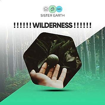! ! ! ! ! ! Wilderness ! ! ! ! ! !