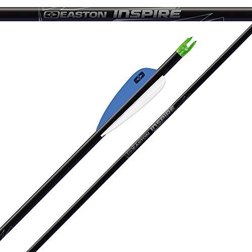 12x Carbonpfeil Easton Inspire Bogenpfeil Sportbogen Spine 900