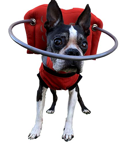 Muffin's Halo Blind Dog Harness Guide Device – Help for Blind Dogs or Visually Impaired Pets to Avoid Accidents & Build Confidence – Ideal Blind Dog Accessory to Navigate Surroundings. RED S