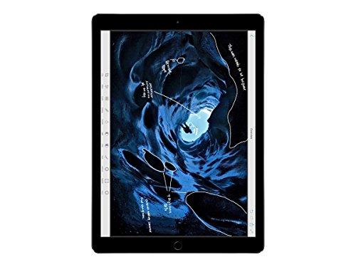 Apple iPad Pro 12.9 (1.ª Generación) 256GB Wi-Fi - Gris Espacial (Reacondicionado)