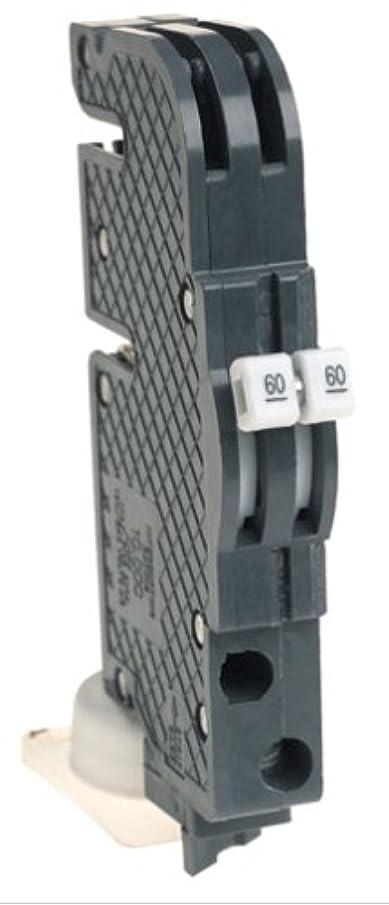 View-Pak Div. Of Tes UBIZ0260 Unique Zinsco Dual Pole Thin Circuit Breakers