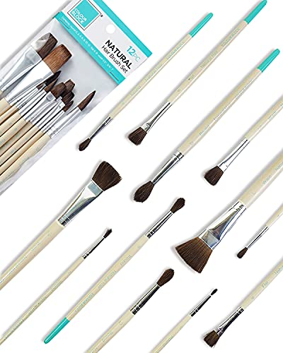 COLOUR BLOCK 12 Pack All Purpose Assorted Natural-Bristled Paint Brushes-Essentials for Watercolor Paint, Oil Paint Set, Kids School Supplies Detail Paint Brush Set for All Levels