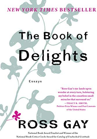 The Book of Delights Essays product image
