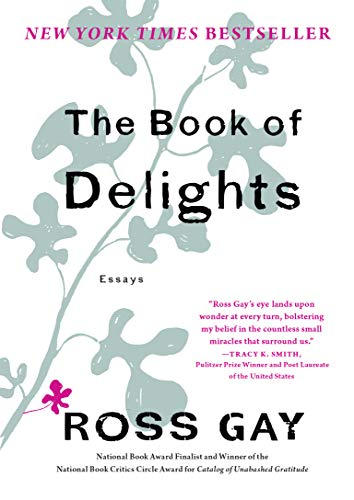 The Book of Delights: Essays - Kindle edition by Gay, Ross ...