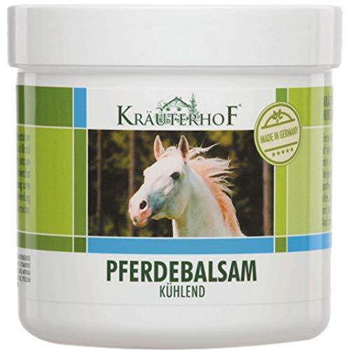 2 x Kräuterhof Pferdebalsam Balsam kühlend Massage Gel Creme je 250ml