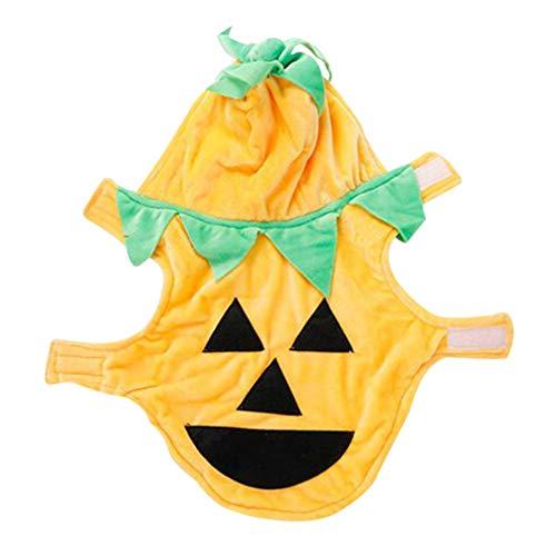 Balacoo Disfraz de calabaza para perro, gato, Halloween, Halloween, calabaza, calabaza, mascota, fantasía, cosplay, ropa, cachorro, sudadera cálida