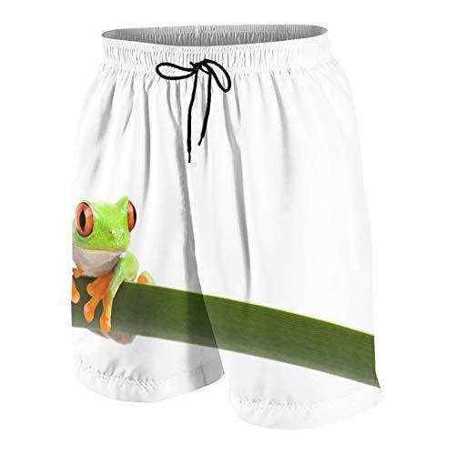 Herren Beiläufig Boardshorts,Laubfrosch thront auf einem Langen schlanken Blatt, rotäugiger Laubfrosch (Agalychnis Callidryas,Schnelltrocknend Badehose Strandkleidung Sportbekleidung mit Mesh-Futter