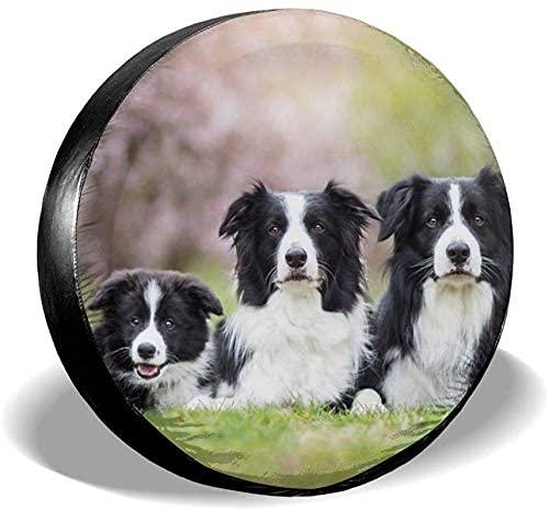 Lewiuzr Cubierta de neumático de Repuesto Impermeable para Perros Border Collie en Blanco y Negro se Adapta a Ajuste Universal