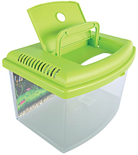 Zolux TravelBox II Aquarium für Transport/Kinderzimmer für Aquaristik 22 cm.