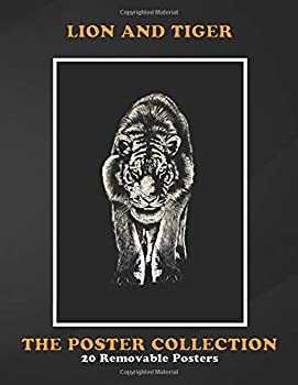 Poster Collection  Lion And Tiger Stare Animals