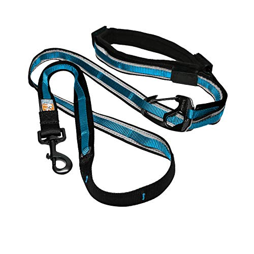 Kurgo 6 in 1 Hands Free Dog Leash , Reflective Running Belt Leash for Dogs, Crossbody & Waist Belt Leash, Carabiner Clip, Padded Handle, For Training, Hiking, or Jogging, Quantum Leash, Coastal Blue