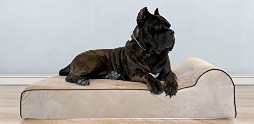 Bully beds Orthopedic Memory Foam Dog Bed - Waterproof Bolster Beds for Large and Extra Large Dogs - Durable Pet Bed for Big Dogs (Extra Large, Tan)