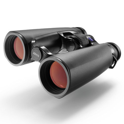 ZEISS Victory 10x42 SF Binoculars 524222 by