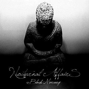 Nocturnal Affairs (Original mix)