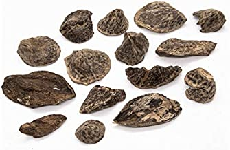 15 Pieces Vietnam Natural Agarwood Chips - Oud Chips – 13.5gr - 天然沉香 - Triple