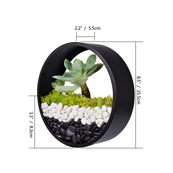 Ecosides Wall Mounted Planter Wall Hanging Planters Metal Plant Terrarium for Indoor Planter, Round Terrarium for Faux Flower Air Plant Holders Decorative Morden Circle Iron Vase for Succulent 5 Geometric metal wall planter is perfect for hanging succulents or office organization. Durably-constructed of metal in a classic and styled look. Perfect accent for any home or patio. Durably-constructed of metal in a classic and styled look. Perfect accent for any home or patio. Not only wall plaques or contemporary lighting can give a stunning look to your walls, hanging planters like this can also change your walls into something extraordinary. Plant some aromatic plants in this planter also bring some greenery effect to your space. Functional and chic it is perfect for expressing your style at home.