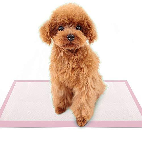 BLEVET Trainingsunterlagen für Hunde/Katzen Hygieneunterlagen das Training erleichtern MZ068 (60x60cm,40pcs,Pink)