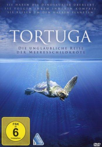 Tortuga - Die unglaubliche Reise der Meeresschildkröte