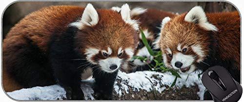 Gaming Mouse Pad con Bordes cosidos, Botas Zoo Little Panda Chicago Non-Slip Base de Goma Mousepad