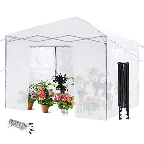 COSTWAY Gewächshaus mit 4 Beobachtungsfenster, Foliengewächshaus Treibhaus Pflanzenhaus Folienhaus Folienzelt 300x300x256-275cm transparent