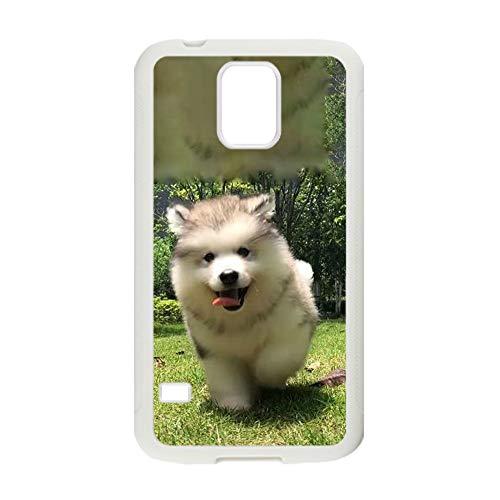 Desconocido Impresión Siberian Husky 5 Compatible con Samsung Galaxy S5 Teléfono Conchas Abs Original Niño