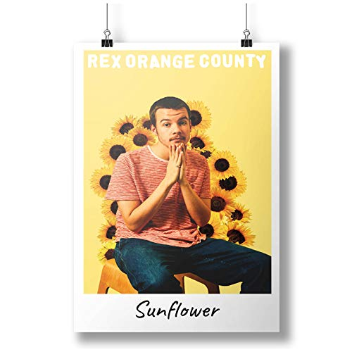 Music Rex Orange County Sunflower A0 A1 A2 A3 A4 Poster de fotos satinado p11418anh