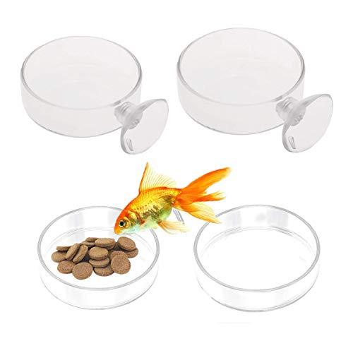 Counius 4pcs Aquarium Mangeoire à Poissons et crevettes avec Ventouse/sans Ventouse Verre Rond Plat Alimentation Mangeoire pour Nourriture,Crevettes,Petits Poissons-60mm/65mm