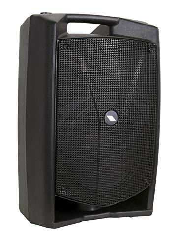 Proel V10PLUS - Cassa Monitor Diffusore bi-amplificato a 2 vie 600W Picco, Nero (PROEL - V10PLUS)
