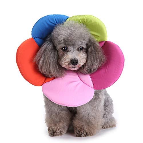 JPYH Collares y Conos recuperación caninos Collar,Cono Collar Anti-mordida y Anti-ruptura para Perros y Gatos, for Mascotas E-Collar Collar Cuello isabelino Protector