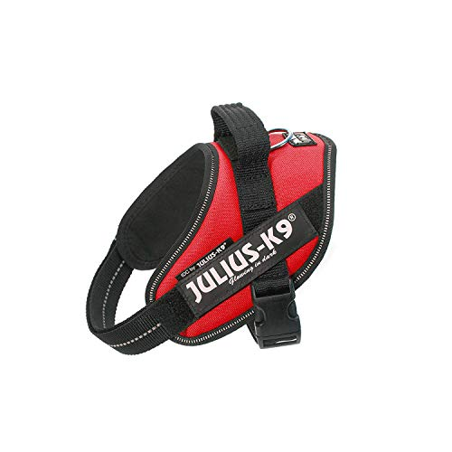 Julius-K9, 16IDC-R-M, IDC Powerharness, dog harness, Size: Mini, Red