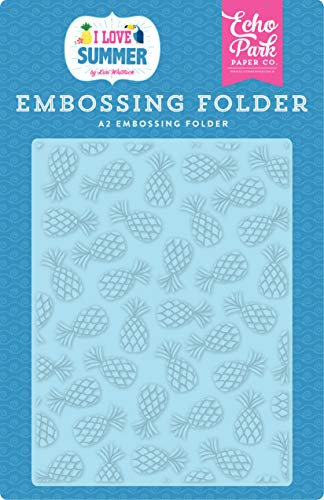 Echo Park Paper Company Summer Pineapples embossing folder, pink, teal, green, yellow, blue, red