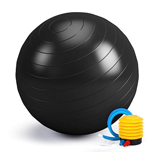 Smartor Exercise Ball 65CM Fitness Ball, Anti-Burst Stability Ball with Quick Pump, Professional Balance Ball for Pilates, Yoga, Core Strength,...