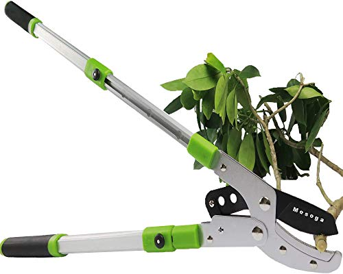 Mesoga Bypass Lopper with Extendable, Anvil Lopper Heavy Duty, Tree Trimmer Telescopic 26-41 Inch, Garden Pruner 5 Sections Handle Adjustment, Branch Cutter with 2 Inch Cut Capacity