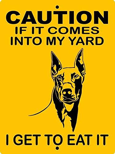 Doberman Pinscher Caution Yard Protection Aluminum Sign Free shipping on posting reviews Limited Special Price 9