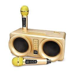 cheap Karaoke machine, rechargeable Bluetooth speaker Vamvo VF-301 15W2, two radio microphones, …
