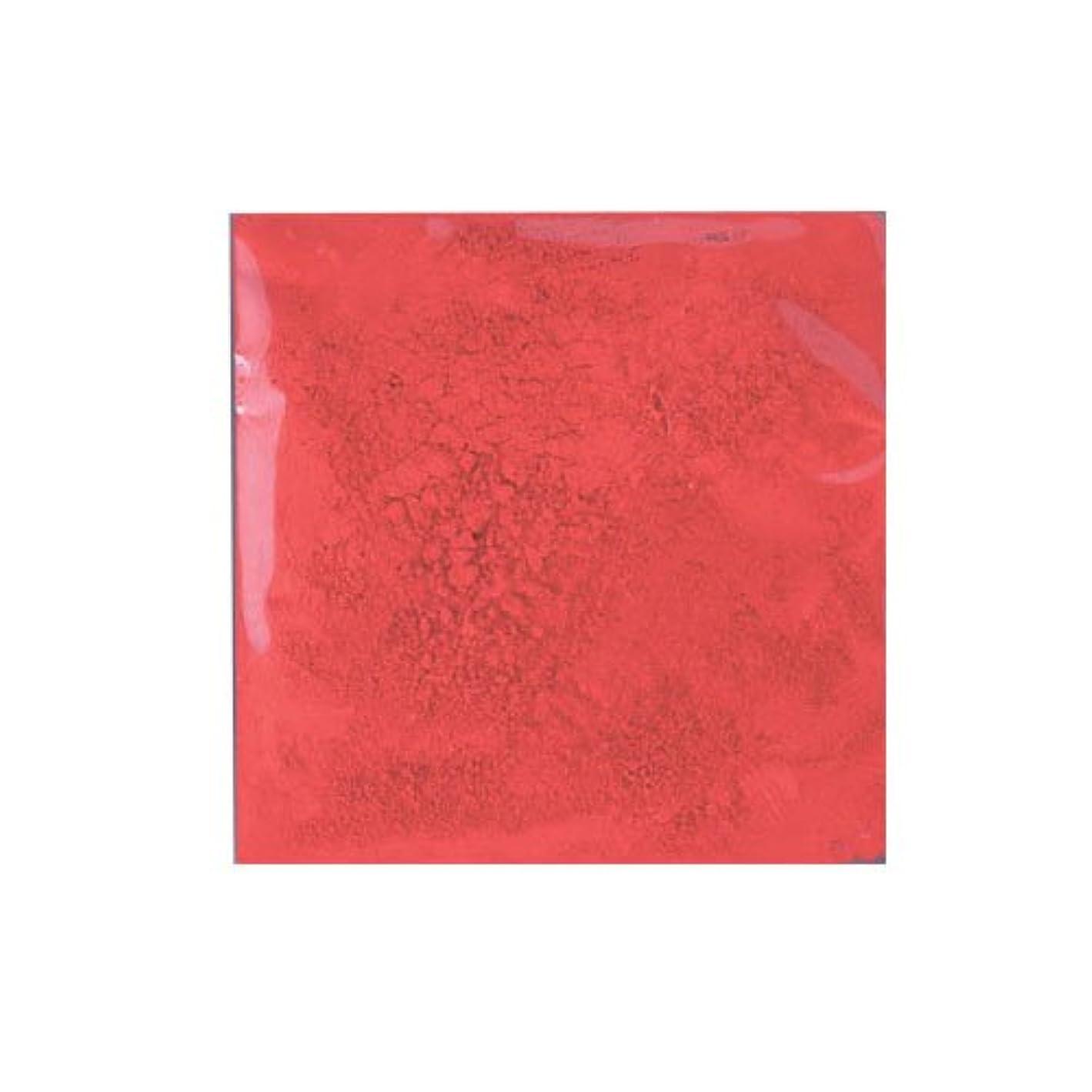 ガイダンス銅分析的ピカエース ネイル用パウダー ピカエース カラーパウダー 着色顔料 #731 ファイヤーレッド 2g アート材